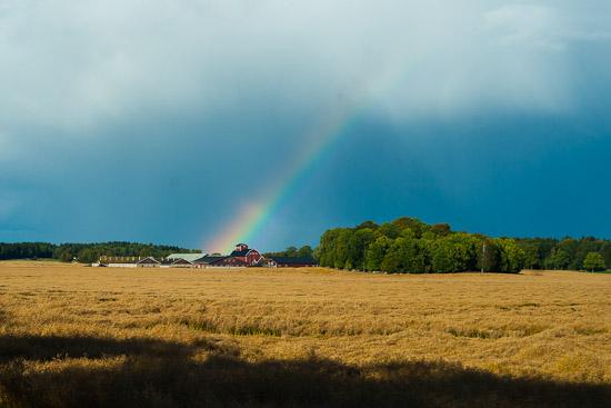 En vacker regnbåge över gården